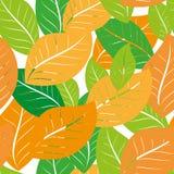 Sömlös modell med ekollonar och hösteksidor i apelsin, beiga, brunt och guling Göra perfekt för tapeten, gåvapapper vektor illustrationer
