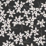 Sömlös modell med eleganta isolerade vita blommor och sidor Arkivfoton