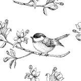 Sömlös modell med en fågel på en filial royaltyfri illustrationer