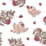 Sömlös modell med fåglar och rönnbär vektor illustrationer