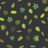 Sömlös modell med gröna tropiska sidor Blom- bakgrund, vektorillustration på svart Royaltyfria Bilder