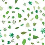 Sömlös modell med gröna tropiska sidor Blom- bakgrund, vektorillustration på vit Royaltyfria Bilder