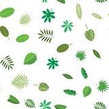 Sömlös modell med gröna tropiska sidor Blom- bakgrund, vektorillustration på vit Arkivfoton