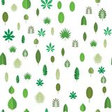 Sömlös modell med gröna tropiska sidor Blom- bakgrund, vektorillustration på vit Fotografering för Bildbyråer