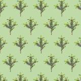 Sömlös modell med granfilialer på grön bakgrund stock illustrationer