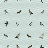 Sömlös modell med gulliga små fåglar royaltyfri illustrationer