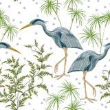 Sömlös modell med hägerfågeln och träskväxter Royaltyfria Bilder