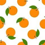 Sömlös modell med hand drog apelsiner på vit bakgrund I tappningstil Arkivfoto