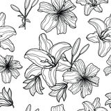 Sömlös modell med hand drog liljor Arkivfoton