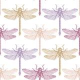 Sömlös modell med handen som dargonfly dras Vektorkryp skissar samlingen Vinatge vårbakgrund Färgad pastell stock illustrationer