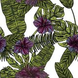 Sömlös modell med hibiskusblommor Stock Illustrationer