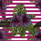 Sömlös modell med hibiskusblommor Royaltyfri Illustrationer