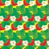 Sömlös modell med jordgubbar med blommor Arkivbild
