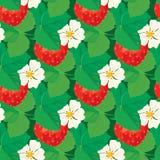 Sömlös modell med jordgubbar med blommor och sidor Arkivfoto