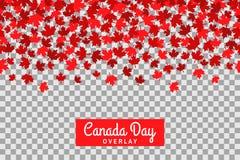 Sömlös modell med lönnblad för 1st av Juli beröm på genomskinlig bakgrund symboler för den knappKanada dagen ställde in Arkivbild