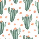 Sömlös modell med målade exotiska kaktuns för vattenfärg den hand vändkretssuckulenter och gröna växter stock illustrationer