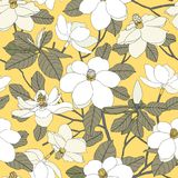Sömlös modell med magnoliablommor och sidor på guling tillbaka Arkivbild