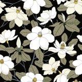 Sömlös modell med magnoliablommor och sidor på svart backg Arkivbild