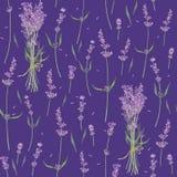 Sömlös modell med sidor och blommor av lavendel, vattenfärgmålning vektor illustrationer