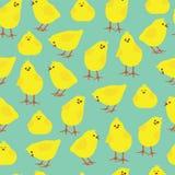 Sömlös modell med små fågelungar Royaltyfri Foto