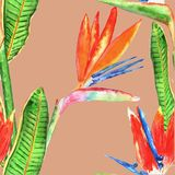 Sömlös modell med tropiska blommor vattenfärg tecknad hand stock illustrationer