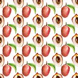 Sömlös modell med tropiska exotiska frukter litchiplommonskiva på whiyebakgrund Arkivfoto