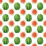 Sömlös modell med tropiska exotiska frukter Vattenmelonskiva på vit bakgrund Arkivfoto