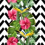 Sömlös modell med tropiska sidor och blommor Gömma i handflatan filialer, fågel av paradisblomman, hibiskus vektor illustrationer