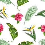 Sömlös modell med tropiska sidor och blommor Gömma i handflatan filialer, fågel av paradisblomman, hibiskus royaltyfri illustrationer