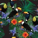 Sömlös modell med tukan och blommor Hand Arkivbilder