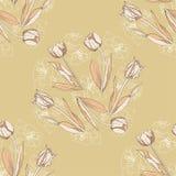 Sömlös modell med tulpan flowers-02 Royaltyfri Bild