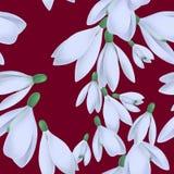 Sömlös modell med vita snödroppar på burgundy bakgrund stock illustrationer