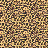Sömlös modelldesign för leopard, stock illustrationer