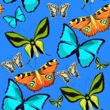 Sömlös modellOrnithoptera paradisea, fjärilsvingar av en bi Arkivbild