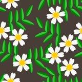 Sömlös modellvektor av vita blommor och gräsplansidor Fotografering för Bildbyråer