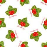 Sömlös modellvektor för jordgubbe Royaltyfri Fotografi