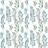 Sömlös naturlig botanisk vattenfärgmodell royaltyfri illustrationer