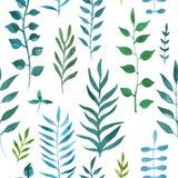 Sömlös naturlig botanisk vattenfärgmodell Royaltyfria Foton