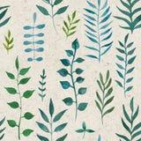 Sömlös naturlig botanisk vattenfärgmodell stock illustrationer