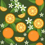 Sömlös orange frukt- och blommatextur 545 Arkivbilder