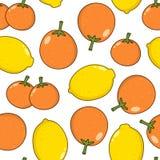 Sömlös orange tangerin för citrus citron Arkivbilder