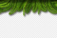 Sömlös palmbladgräns vektor Royaltyfria Bilder