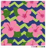 Sömlös patterm för hibiskusblomma Arkivfoton