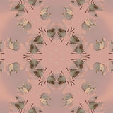 Sömlös prydnad med grå färger för gräsplan för spiralrosa färgbrunt Fotografering för Bildbyråer