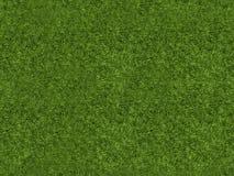 Sömlös repeatable tolkning för modell 3d av en gräslapp för ar Royaltyfri Fotografi