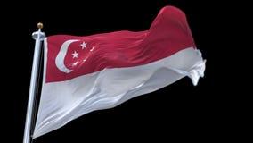 sömlös Singapore flagga för 4k som vinkar i vind Inklusive alfabetisk kanal lager videofilmer