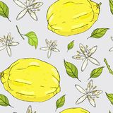 Sömlös sommarmodell med citroner och blommor Arkivfoton