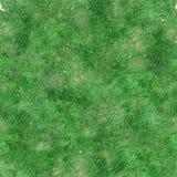 Sömlös tegelplattatextur för grönt gräs Royaltyfri Bild