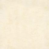 Sömlös textur av det gamla papperet Royaltyfri Fotografi