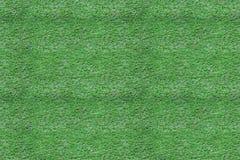 Sömlös textur av gräsplan klippt gräs Arkivbilder